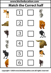Match the Correct half animal Worksheet 5