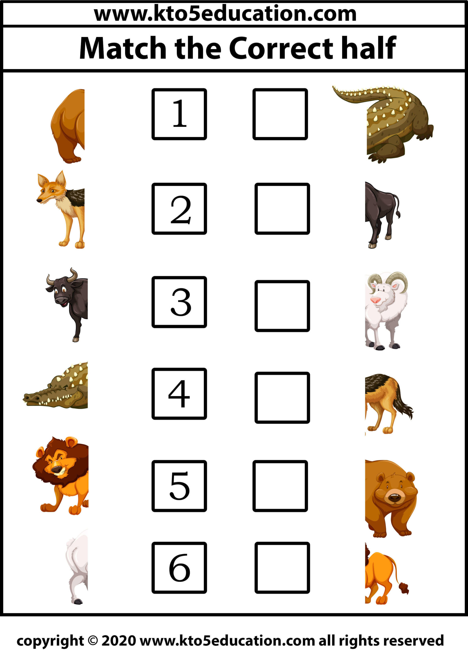 Match the Correct half animal Worksheet