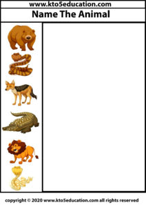 Write the name of the Animal Worksheet 1