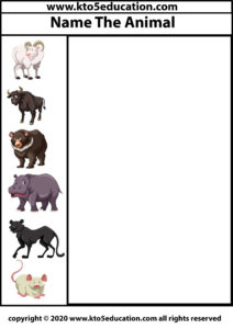 Write the name of the Animal Worksheet 4